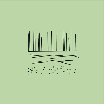 składanka faworów /Być/ na składance: fawory
